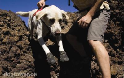 Hundegeschirr zur Unterstützung des Hundes