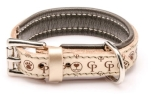 Cane Pazzolo The Passion Cp Dog Collar Gold
