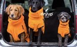 DRYUP cape Hundebademantel, edition clementine