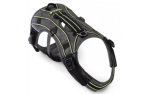 EQDog Pro Harness Green stripes