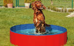Karlie Doggy Pool, blau/rot