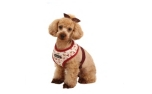 Puppia Dog Story Harness A wein