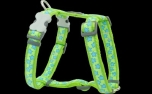 Red Dingo Nylon Hundegeschirr, Stars Lime Green