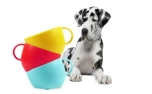 United Pets CUP Dog Bowl Red